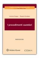 I procedimenti cautelari 2015