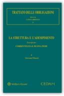 Trattato delle obbligazioni - Vol. I: La struttura e l'adempimento - Tomo IV: Correttezza e buona fede 2018
