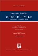 Libro III Artt. 1140-1172 Della proprietà
