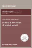 Bilancio e libri sociali. Gruppi di società