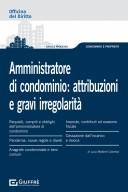 Amministratore di condominio: attribuzioni e gravi irregolarità