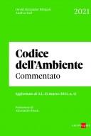 Codice dell'ambiente commentato