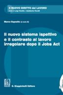 Il nuovo sistema ispettivo e il contrasto al lavoro irregolare dopo il Jobs Act