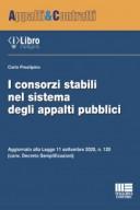 I consorzi stabili nel sistema degli appalti pubblici