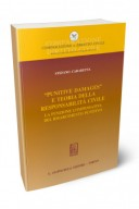 Punitive demages e teoria della responsabilità civile