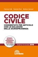 Codice civile commentato per articolo con le soluzioni della giurisprudenza